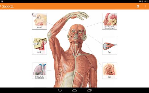 Sobotta Anatomie Atlas kostenlos herunterladen - austrianapps ...