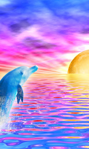 Rainbow Dolphin Live Wallpaper Free Download - ua ...