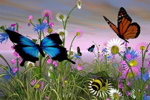 3d Butterfly Hd Live Wallpaper Free Download Cool Butterfly Live